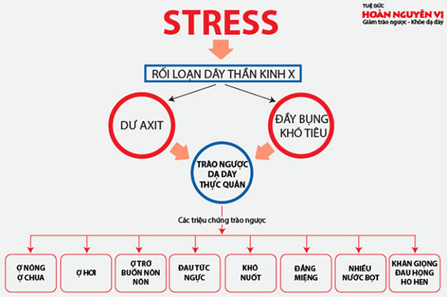 Stress được xác định là nguyên nhân chủ yếu gây ra căn bệnh trào ngược dạ dày thực quản rất phổ biến hiện nay
