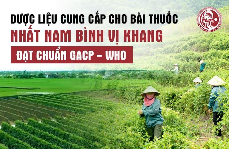 Nhất Nam Bình Vị Khang được bào chế với nguồn dược liệu sạch, đạt chuẩn chất lượng
